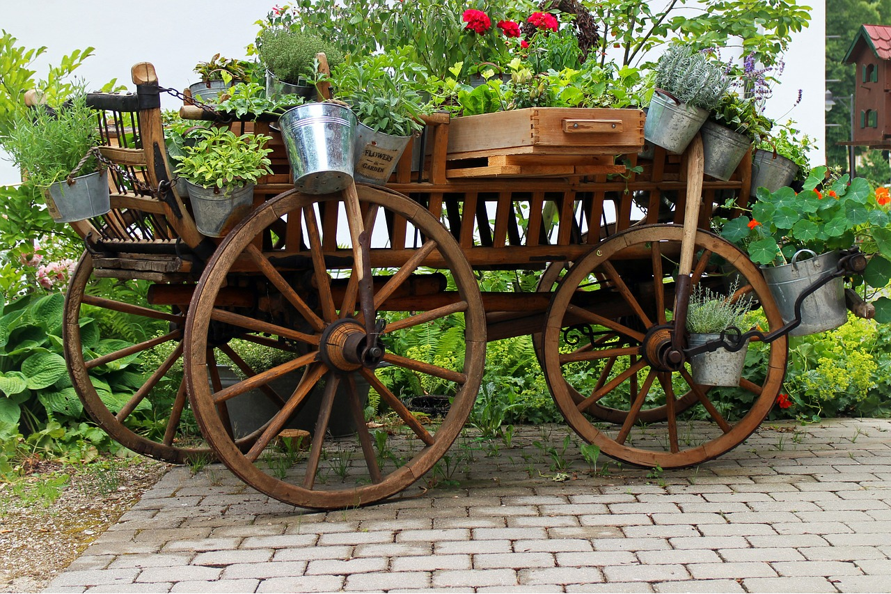 Photographie d'un carrosse de fleurs